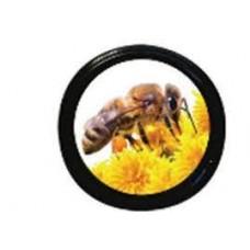Bee On Yellow Flower Lids (70mm)